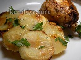 Картофельный гратен с запечённой курицей